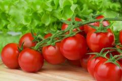 Ny körsbärsröd tomatcloseup på skärbrädan Royaltyfria Foton