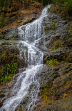Den nya kalla vattenfallet på mossigt vaggar Orörd naturlig miljö av Filippinerna Royaltyfri Bild
