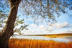 Den nya klara sjön Royaltyfri Fotografi