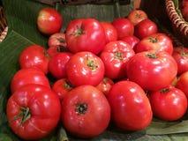 Den nya organiska tomaten står ut bland många tomaten på banantjänstledigheter med suddighetsbakgrund i korg i supermarket Hög av Arkivbilder