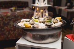 Den nya ostron tjänade som på vita stenar på ett magasin Arkivbilder