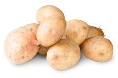 Den nya potatisen Arkivfoton