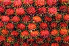 Den nya rambutanen, rambutans bär frukt många för bakgrund, söt läcker frukt för rambutanen, röda sunda frukter rambutanen, rambu royaltyfria foton