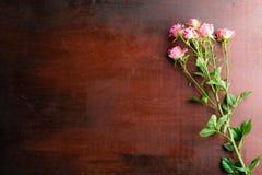 Den nya rosa färgrosen blommar på abstrakt bakgrund av en trätabell Arkivbild