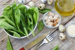 Den nya sunda frukosten behandla som ett barn spenatsidor Ingredienser för spenatsallad med vaktelägg Arkivfoto