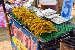 Den nya tioarmade bläckfisken för galler i en marknad, khonkaen Thailand Royaltyfri Fotografi