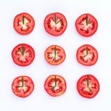 Den nya tomaten klippte halva med rosmarinbladet som en klocka Världsklocka Royaltyfri Fotografi