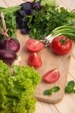 Den nya tomaten med chieves, löken, ost, sallad Fotografering för Bildbyråer