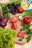 Den nya tomaten med chieves, löken, sallad Arkivbild