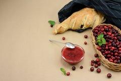 Den nya tranbäret, den franska bagetten och bär sitter fast på bageripapper, kopieringsutrymme Royaltyfria Foton