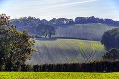 Den nya vintern kantjusterar visning i jordbruksmark nära Crowhurst, östliga Sussex, England arkivbild