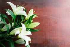 Den nya vita liljan blommar på abstrakt bakgrund av en trätabl Royaltyfri Fotografi