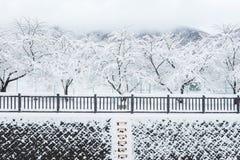 Den nya vita snönedgången på offentligt parkerar i vintersäsong Royaltyfria Bilder