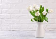 Den nya vita tulpan blommar buketten framme av den vita tegelstenväggen Arkivfoton