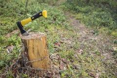Den nya yxan klibbade a i en trädstubbe på en bakgrund av den nya banan Fotografering för Bildbyråer