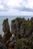 Den Nya Zeeland pannkakan vaggar II Arkivfoton