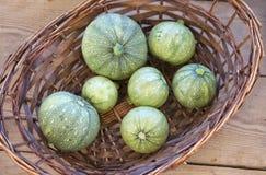 Den nya zucchinin, beskådar uppifrån Grön maltese zuccini i gatamarknaden organiska grönsaker Fragmentfoto av organisk marke Royaltyfri Bild