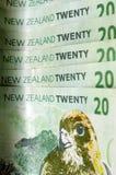 Den nyazeeländska valutadollaren noterar pengar Arkivfoton