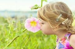 Den nyfikna liten flicka luktar en blomma arkivbild