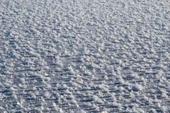 Den nytt stupade snön på isen royaltyfria foton
