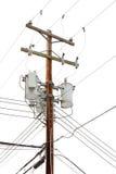 Den nytto- polen med driver kablar och transformatorer Arkivbild