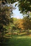 Den offentliga morgonen parkerar landskapsikt Royaltyfri Foto
