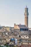 Den offentliga slotten och det är det Mangia tornet i Siena, Italien Arkivfoto