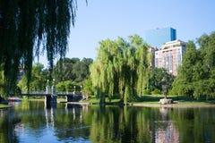 Den offentliga trädgården i Boston Royaltyfria Bilder