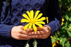 Den oidentifierade flickan med guling blommar på henne händer Royaltyfri Bild