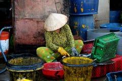 Den oidentifierade kvinnan bearbetar fisken på Qui Nhon fiskport, Vietnam i morgonen Royaltyfria Foton