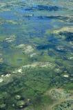 Den Okavango deltan vänder mot de största floderna efter 46 år Royaltyfria Bilder