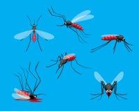 Den olika gulliga myggan poserar den döda tecknad filmvektorillustrationen Fotografering för Bildbyråer