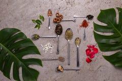 Den olika ingrediensen av tebladet som sätts i många sorten av skeden med många sorten av sidor, bär frukt och dekorerade blommor Arkivfoto