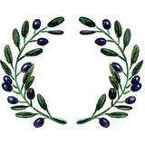 Den olivgröna filialen virvlar Vektor Illustrationer