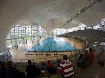 Den olympiska simbassängen Royaltyfri Foto