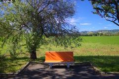Den orange bänken Arkivfoto