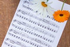 Den orange calendulablomman och vitkamomillen på musikanmärkningar täcker Royaltyfria Foton