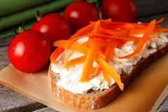 Den orange moroten rakar på bröd med ostmassaost Royaltyfria Foton