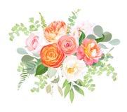 Den orange ranunculusen, den rosa rosen, den vita vanliga hortensian, juliet steg, trädgårdblommor vektor illustrationer