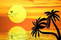 Den orange solnedgången och gömma i handflatan arkivfoto