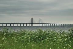 Den Oresund bron, sikt från Malmo. Royaltyfri Bild