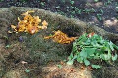 Den organiska composting biologiskt nedbrytbar förlorade högen, grönsak, bär frukt bio royaltyfri fotografi