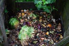 Den organiska composting biologiskt nedbrytbar förlorade högen, grönsak, bär frukt bio arkivfoton