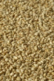 Den organiska quinoaen kärnar ur makrobakgrundstextur Royaltyfri Foto