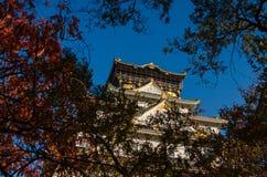 Den Osaka slotten parkerar Royaltyfri Fotografi