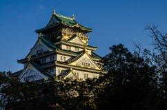Den Osaka slotten parkerar Arkivfoto