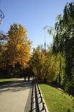 Den Ostankino staden parkerar på höst royaltyfri fotografi