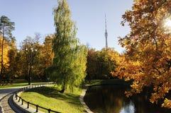 Den Ostankino staden parkerar på höst royaltyfri foto