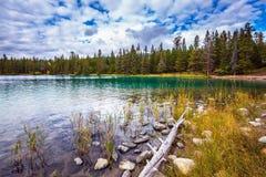 Den ovala sjön med klart vatten Royaltyfria Bilder