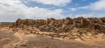 Den ovanliga förstenade skogen - vagga bildande i udde Bridgewater, Victoria, Australien Fotografering för Bildbyråer